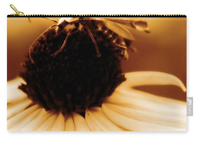 Black Eyed Susan Carry-all Pouch featuring the photograph Mimic by Angela Rath