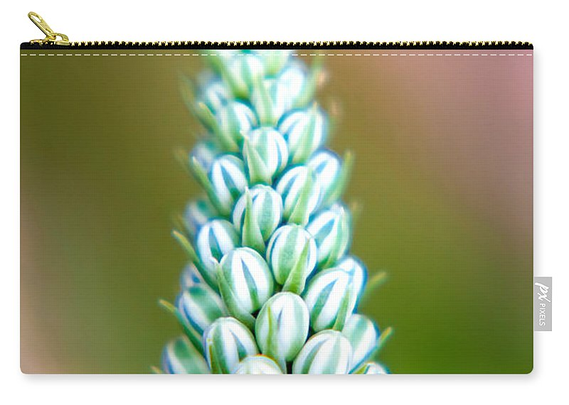 Spring Flowers Carry-all Pouch featuring the photograph Mini Melons by Az Jackson