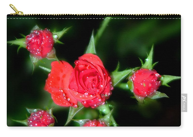Roses Carry-all Pouch featuring the photograph Mini Roses by Anthony Jones