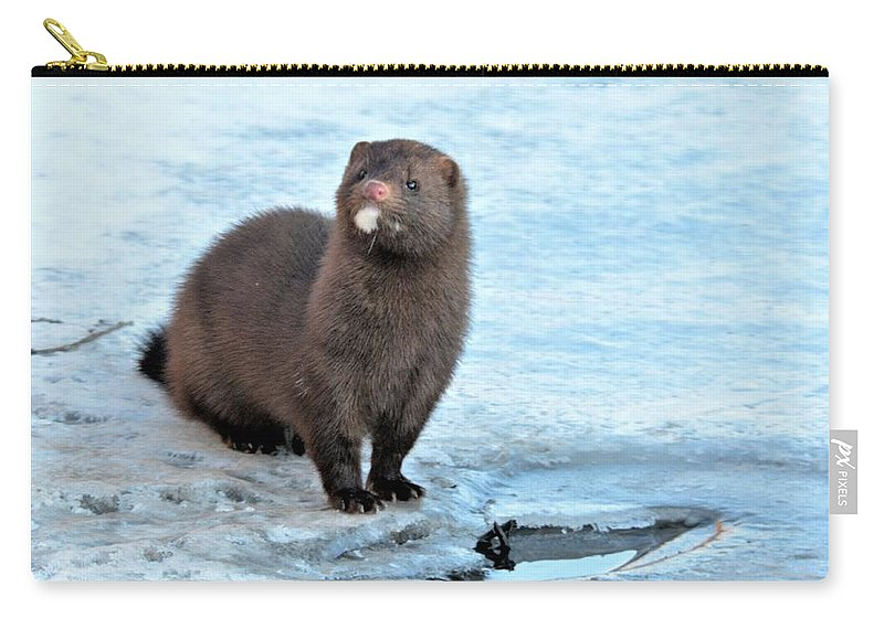 A Mature Mink Carry-all Pouch featuring the photograph Mink by John Adams