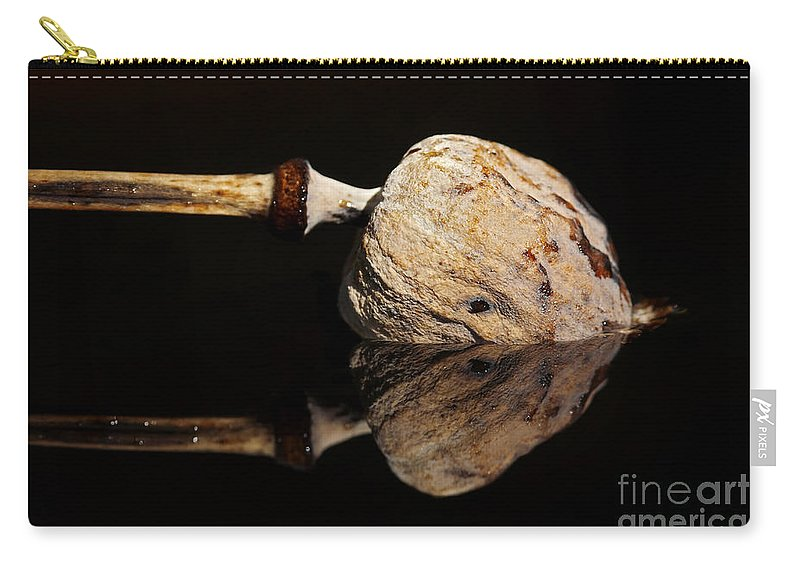 Anacampsis Carry-all Pouch featuring the photograph Mirroring by Michal Boubin