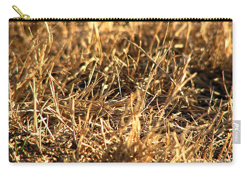 Grass Carry-all Pouch featuring the photograph Mirrors by Amanda Barcon