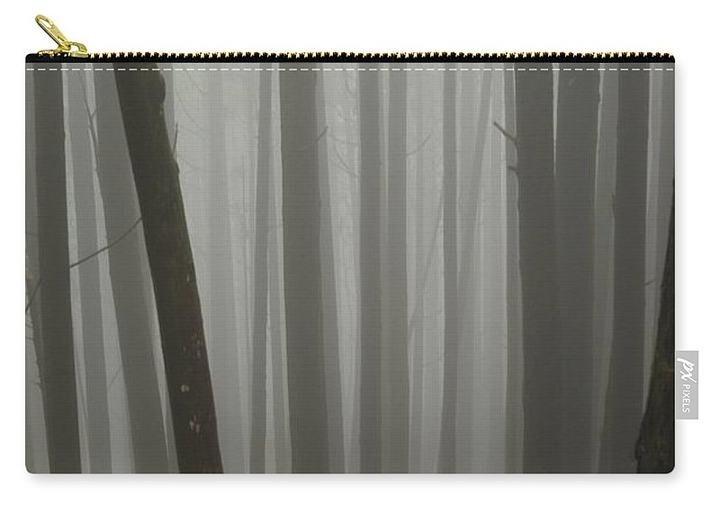 Forest Carry-all Pouch featuring the photograph Misty Forest by MingTa Li