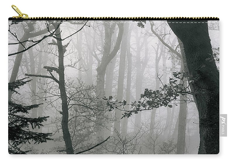 Carry-all Pouch featuring the photograph Misty Woods, Juniper by Iain Duncan