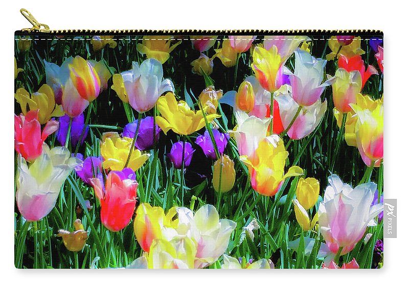 Tulips Carry-all Pouch featuring the photograph Mixed Tulips In Bloom by D Davila