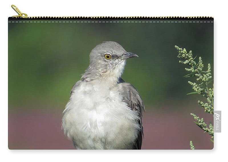 Bird Carry-all Pouch featuring the photograph Mocking by Norman Vedder