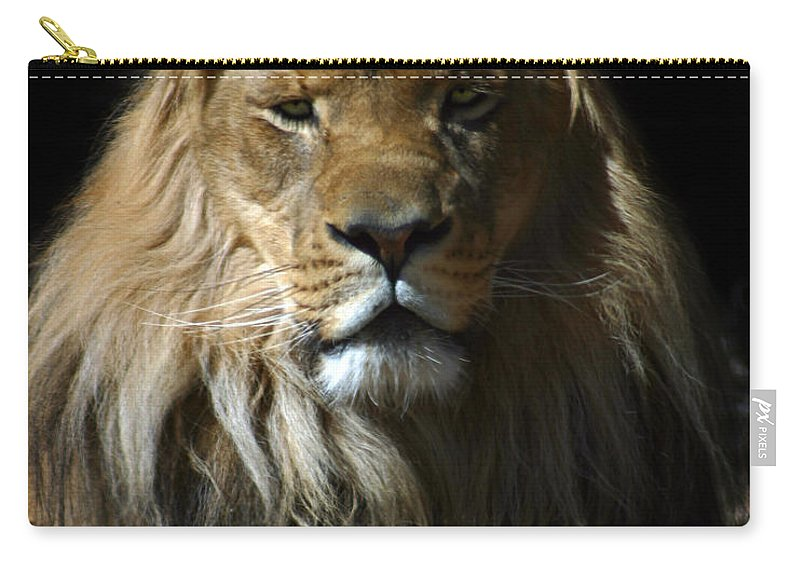 Lion Carry-all Pouch featuring the photograph Mohawk by Anthony Jones