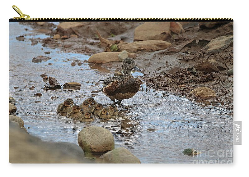 Mallard Carry-all Pouch featuring the photograph Mom Mallard And Ducklings by Amber D Hathaway Photography