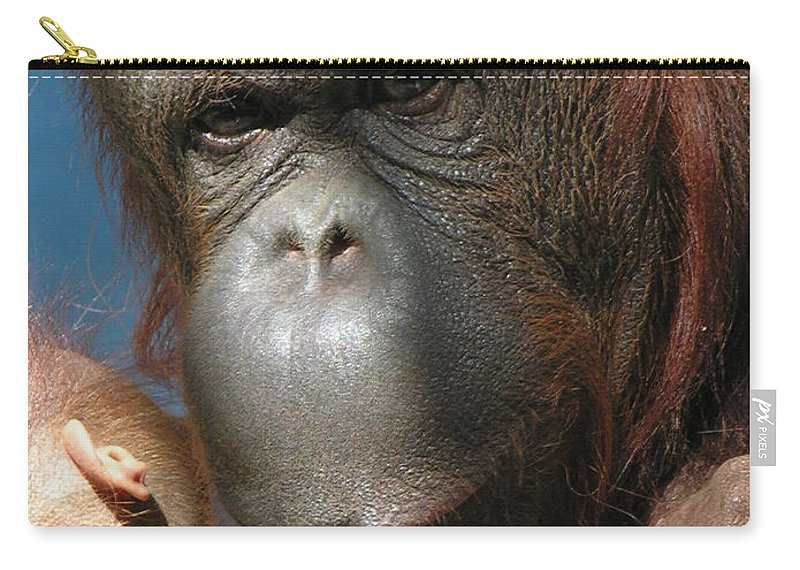 Mother Carry-all Pouch featuring the photograph Mom Protection by Diane Greco-Lesser