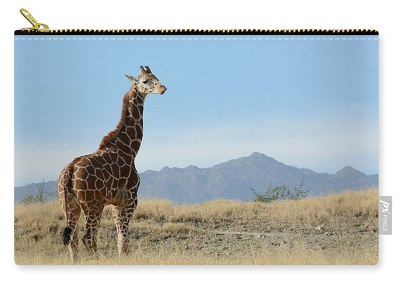 Giraffe Carry-all Pouch featuring the photograph Moment Of Independence by Fraida Gutovich