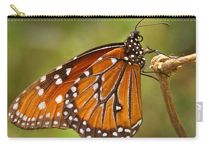 Monarch Carry-all Pouch featuring the photograph Monarch Butterfly by Heather Coen