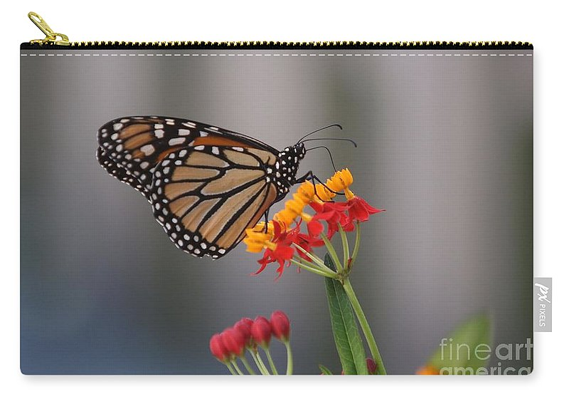 Butterfly Carry-all Pouch featuring the photograph Monarch Butterfly On Milkweed by Randy Matthews