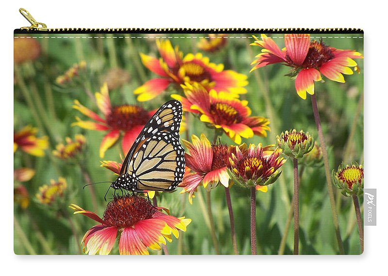Nature Carry-all Pouch featuring the photograph Monarch On Blanketflower by Peg Urban