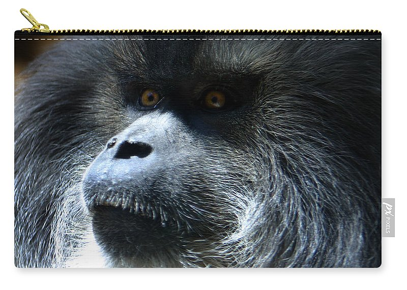 Monkey Carry-all Pouch featuring the photograph Monkey Stare by Anthony Jones