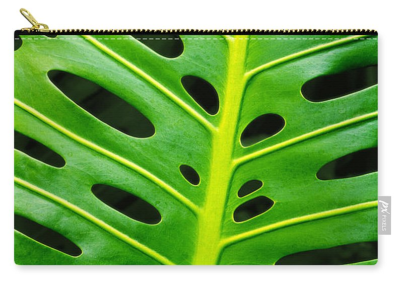 Abstract Carry-all Pouch featuring the photograph Monstera Leaf by Carlos Caetano