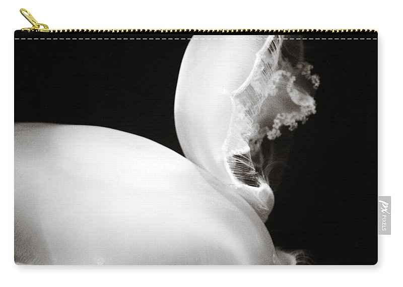 Moon Jellyfish Carry-all Pouch featuring the photograph Moon Jellyfish Touching by Marilyn Hunt