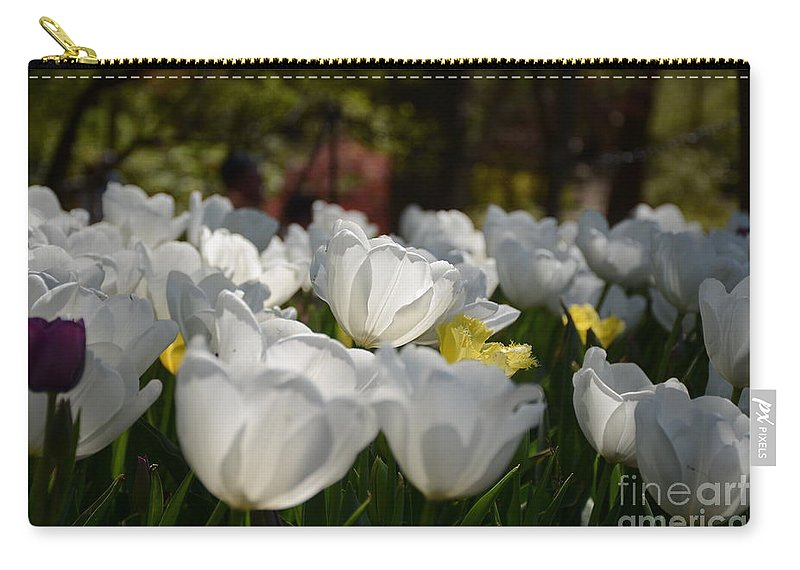 Carry-all Pouch featuring the painting More White Tulips by Constance Woods