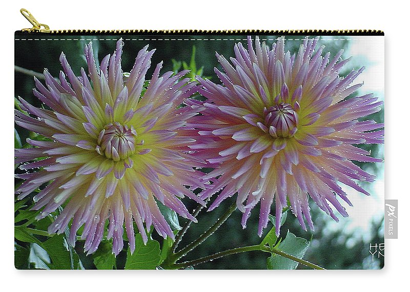 Flower Carry-all Pouch featuring the photograph Morning Dahlias by Shirley Heyn