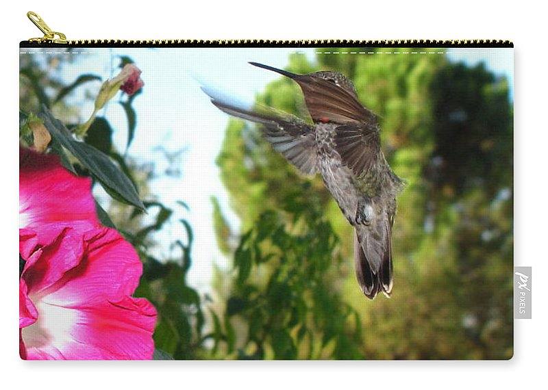 Bird Carry-all Pouch featuring the photograph Morning Glories And Humming Bird by Joyce Dickens