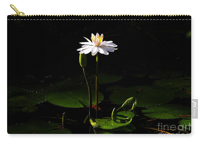 Morning Carry-all Pouch featuring the photograph Morning Glory by David Lee Thompson