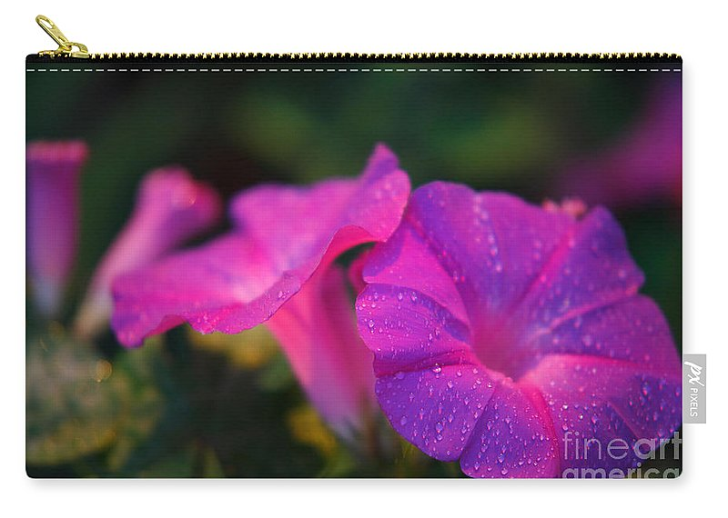 Flora Carry-all Pouch featuring the photograph Morning Glory by Gaspar Avila