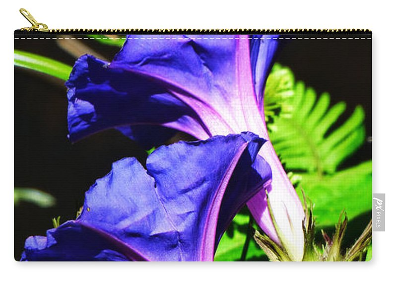 Morning Glory Carry-all Pouch featuring the photograph Morning Glory Twins. by Trudee Hunter