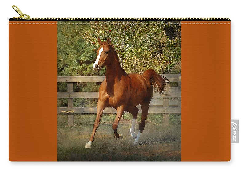 Horse Carry-all Pouch featuring the photograph Morning Has Broken by Fran J Scott