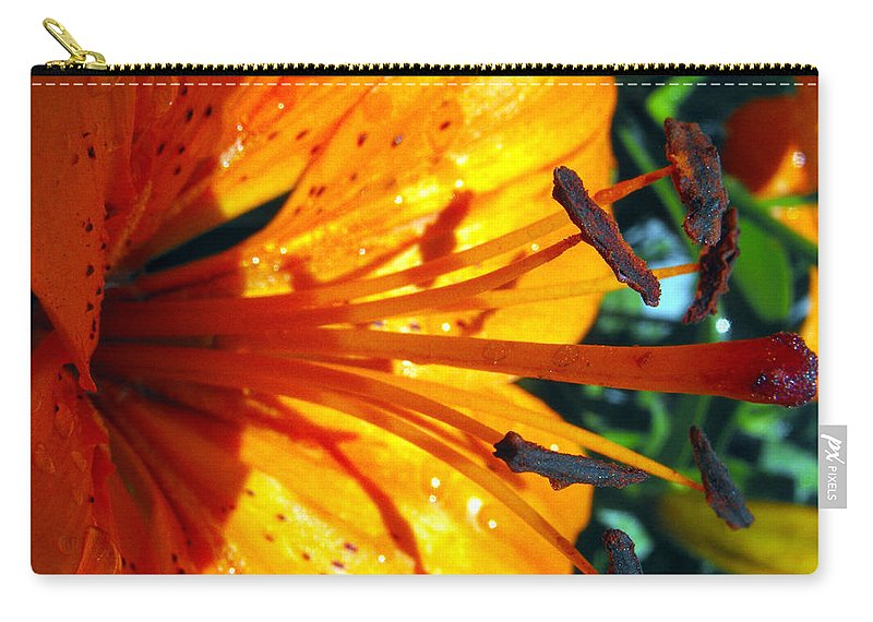 Macro Carry-all Pouch featuring the photograph Morning Lily by Ruth Palmer