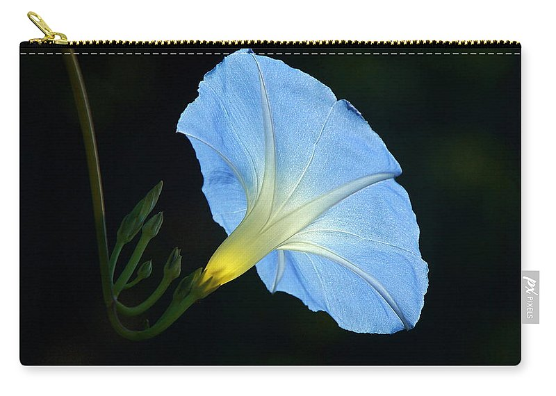 Morning Glory Carry-all Pouch featuring the photograph Morning Magic by Byron Varvarigos
