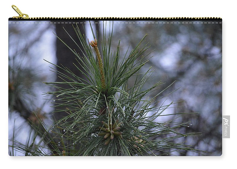 Rain Carry-all Pouch featuring the photograph Morning Rain by Meg M