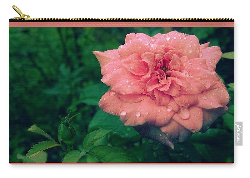 Rose Carry-all Pouch featuring the photograph Morning Rose by Vipin K M