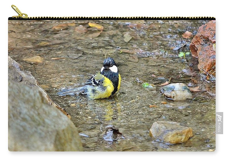 Bird Carry-all Pouch featuring the photograph Morning Splash by Kim Bemis