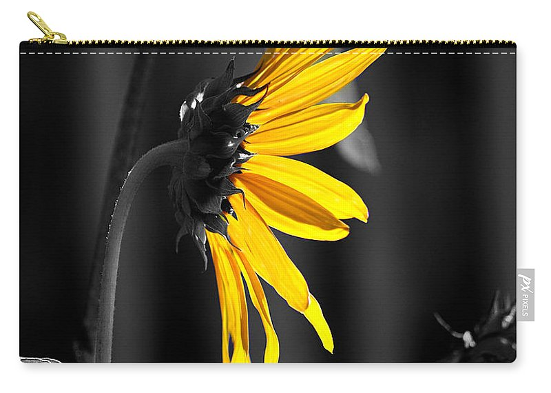 Clay Carry-all Pouch featuring the photograph Morning Sun by Clayton Bruster