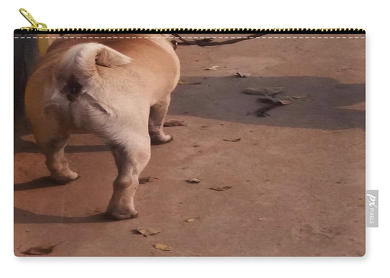 Morning Carry-all Pouch featuring the photograph Morning Walk by Nilu Mishra
