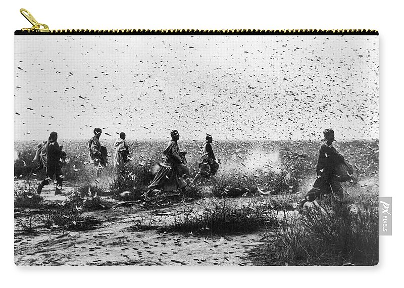 1954 Carry-all Pouch featuring the photograph Morocco: Locusts, 1954 by Granger