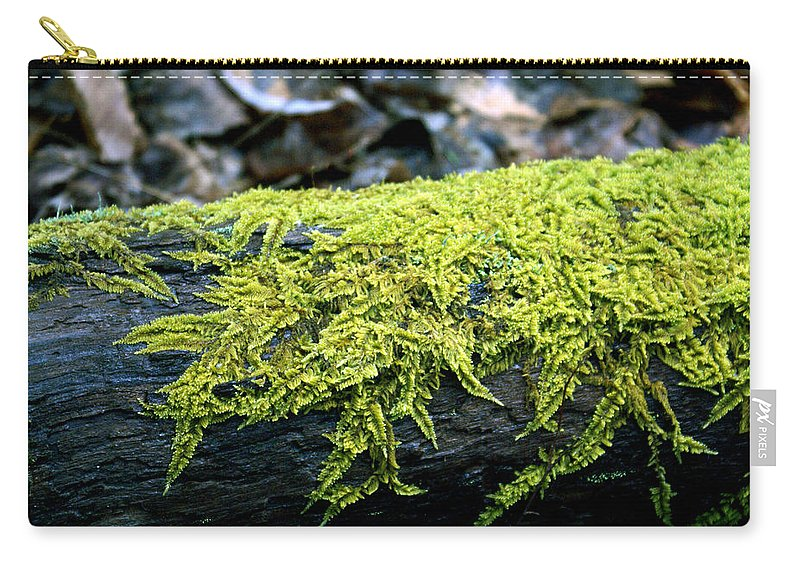 Moss Carry-all Pouch featuring the photograph Mosss On Blackened Log by Douglas Barnett