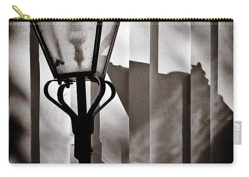 Moth Carry-all Pouch featuring the photograph Moth And Lamp by Dave Bowman