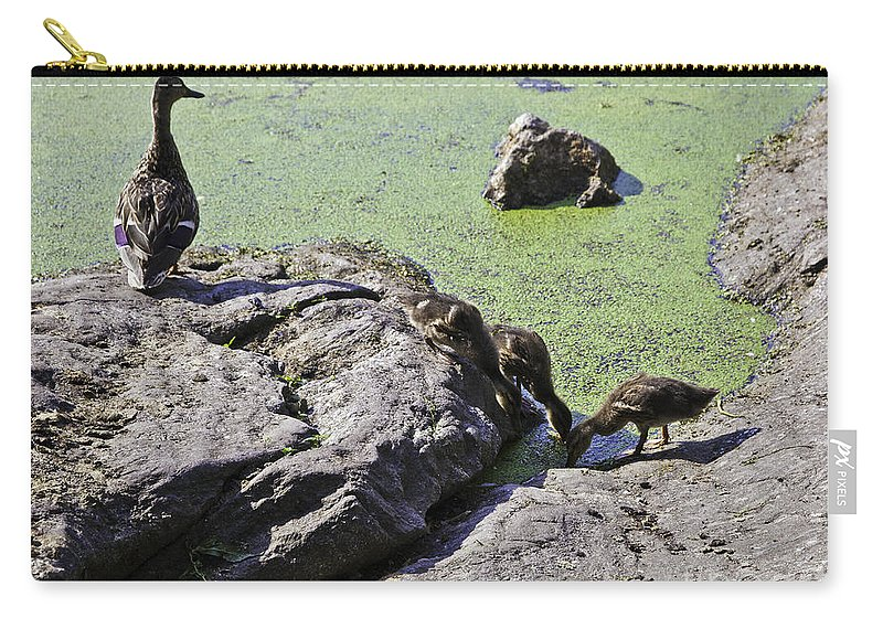 Duck Carry-all Pouch featuring the photograph Mother And Her Ducklings by Madeline Ellis