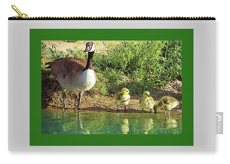 Birds Carry-all Pouch featuring the photograph Mother Goose Of Three Goslings by Kathleen J Beller