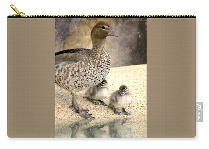 Animals Carry-all Pouch featuring the photograph Mother Of Twins by Holly Kempe