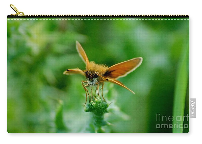 Landscape Carry-all Pouch featuring the photograph Mothera by David Lane