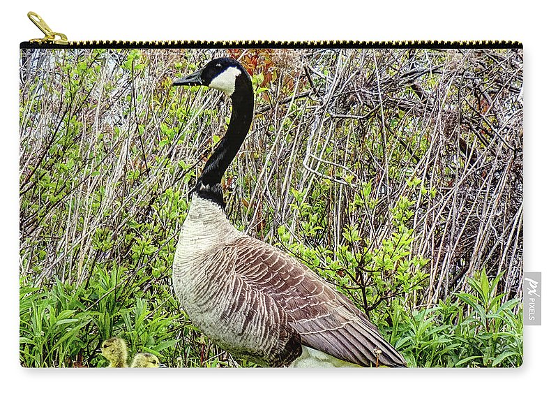 Waterfowl Carry-all Pouch featuring the digital art Motherly by Leslie Montgomery