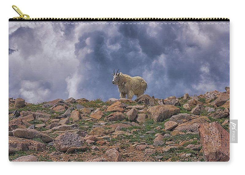 Mountain Goat Overlook Carry-all Pouch featuring the photograph Mountain Goat Overlook by Luis A Ramirez