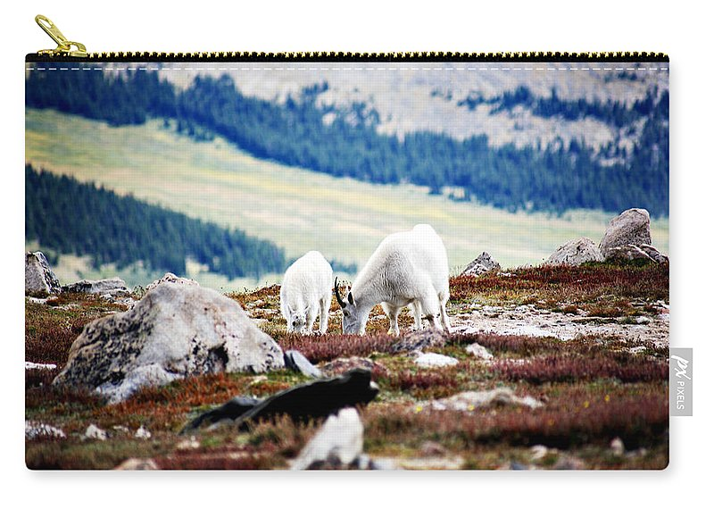 Animal Carry-all Pouch featuring the photograph Mountain Goats 2 by Marilyn Hunt