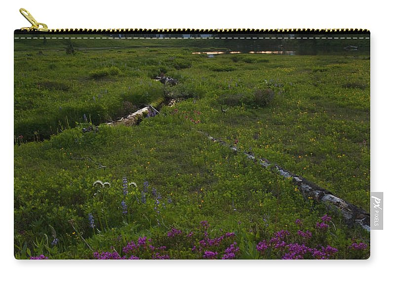 Rainier Carry-all Pouch featuring the photograph Mountain Heather Sunset by Mike Dawson