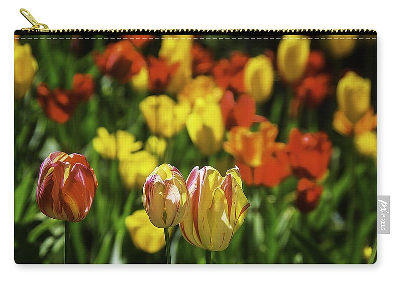 Mountain Carry-all Pouch featuring the photograph Mountain Tulips by Garry Gay