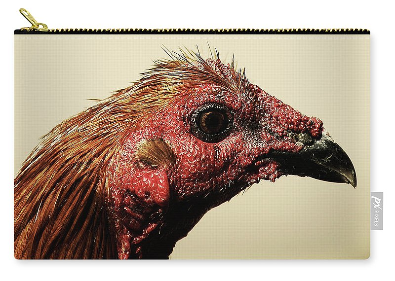 Chicken Carry-all Pouch featuring the photograph Mr. Fighter Rooster by Gustavo Ramirez