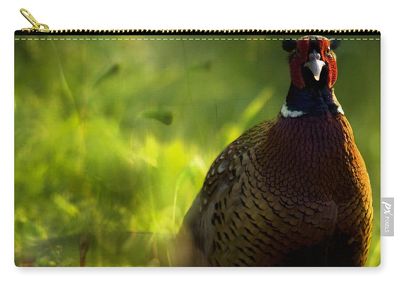 Bird Carry-all Pouch featuring the photograph Mr Pheasant by Angel Tarantella