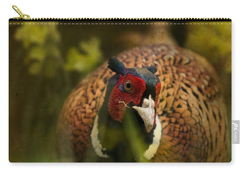 Pheasant Carry-all Pouch featuring the photograph Mr Spring by Angel Ciesniarska