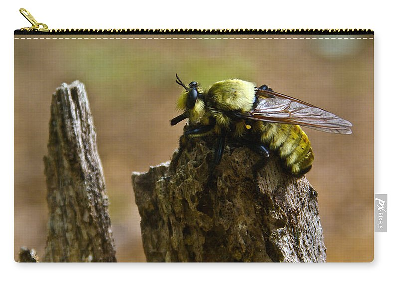 Fly Carry-all Pouch featuring the photograph Mrs. Fly by Douglas Barnett